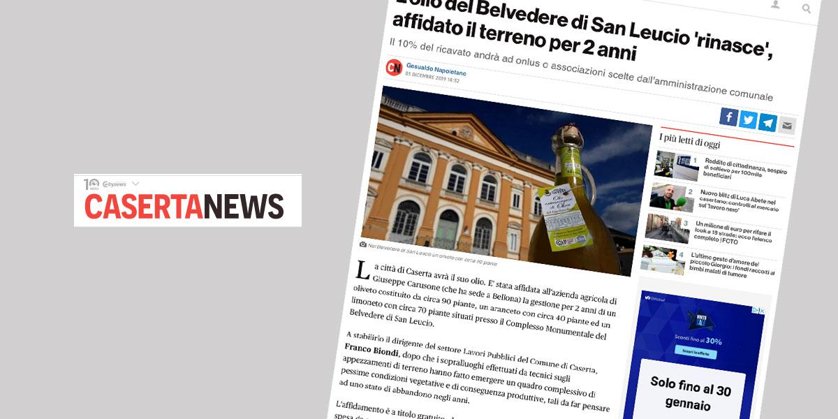 L'olio del Belvedere di San Leucio 'rinasce', affidato il terreno per 2 anni